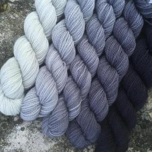 Koigu Grey Skies gradient